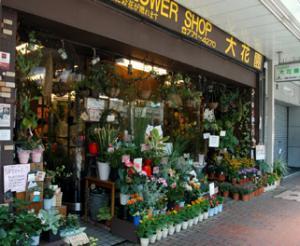 shop012