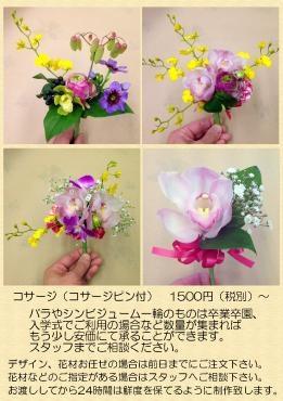 大田区 大森 花屋 卒業式卒園式 入学式入園式