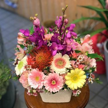 今週の週刊提案は「…|「大花園」 (東京都大田区の花屋)のブログ